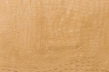Yellow Crocodile Skin Texture.