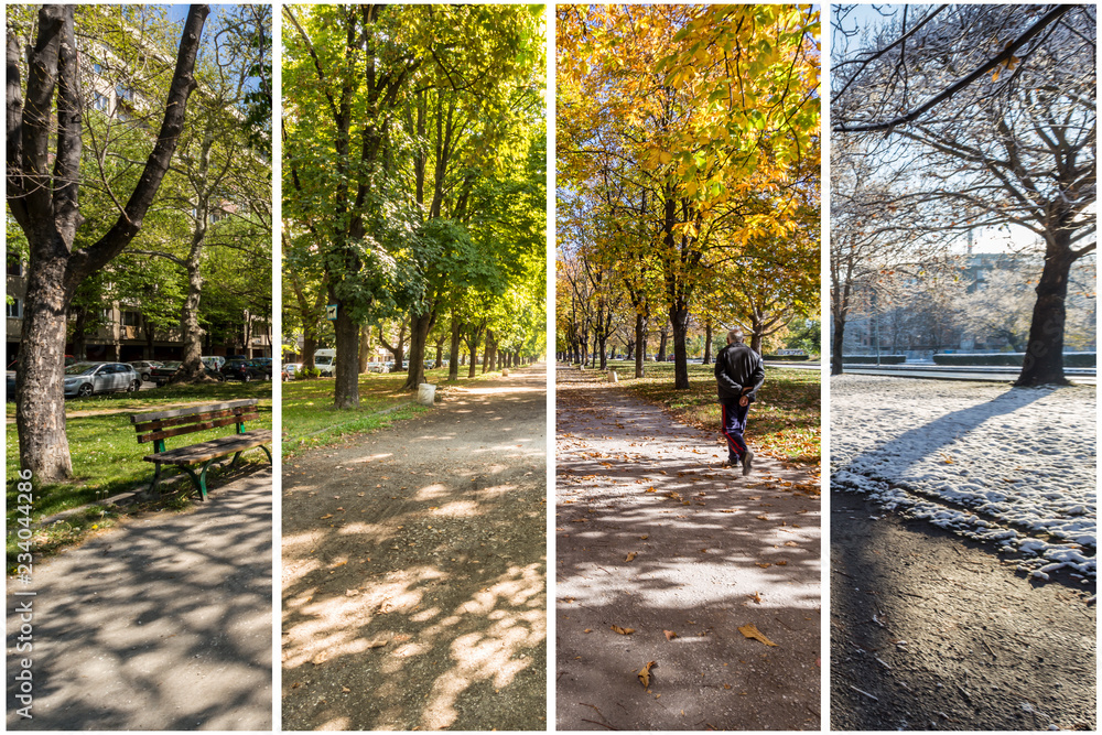 Fototapety, obrazy: Four seasons concept. The effect of the 4 seasons on the urban environment. Four pictures of one place captured during one year and seamlessly blended in one photography composite.