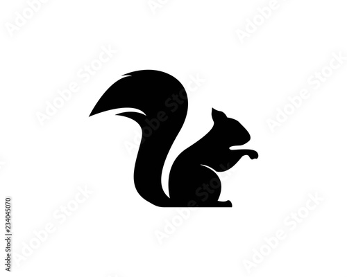 Cuadros en Lienzo squirrel logo vector icon illustration design
