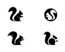 Squirrel Logo Vector Icon Illu...