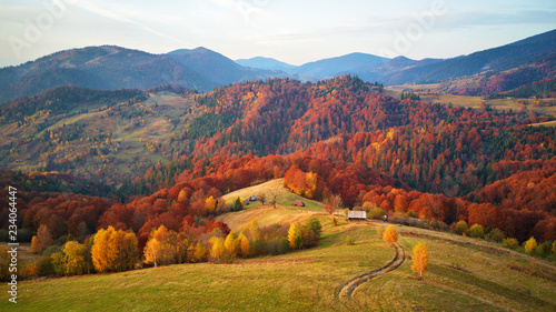 Foto auf Leinwand Honig Beautiful mountain autumn landscape with meadow and colorful forest