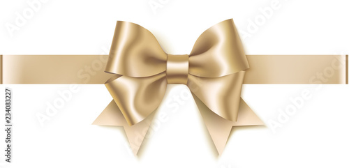 Fotografía  Decorative platinum bow with horizontal ribbon isolated on white background