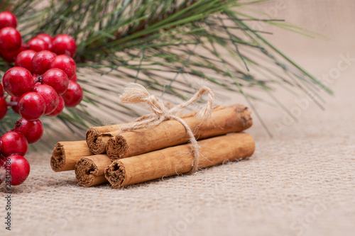 Fotografie, Obraz  Winter Holidays decoration red poinsettia, pine and berry bush with cinnamon sti