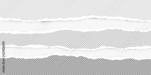 Fotografía  Squared ripped horizontal grey paper for text or message are on white background