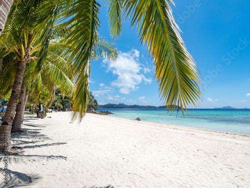 Deurstickers Tropical strand Amazing tropical beach on the island Malcapuya, Palawan, Philippines. Beautiful tropical island with sand beach, palm trees. Tropical landscape: beach with palm trees. Ocean, sky, sea. November, 2018