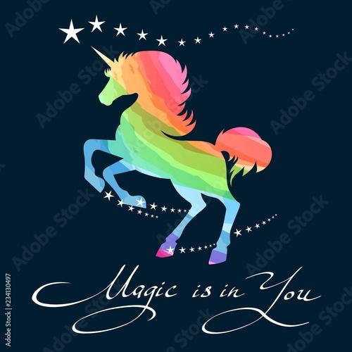 Fotografie, Obraz Rainbow unicorn