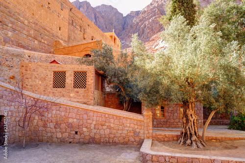 Inside of Saint Catherine's Monastery in Sinai moumtains, Egypt Canvas Print