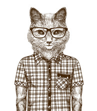 Cat Dressed Up. Hipster Fashion Concept. Sketch Vintage Vector Illustration