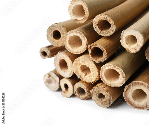 Pile of dry bamboo sticks on white background