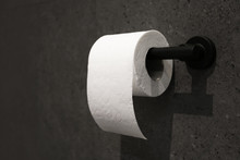 Toilet Paper Holder With Roll ...
