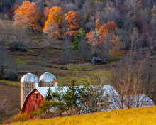 Barn And Silos In Autumn