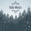 Hello Winter forest landscape and tree pine background