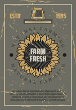 Farm Retro Poster. Vector Sunflower And Harvester