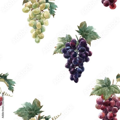 Watercolor grape vector pattern Fototapete