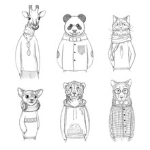 Fashion Animal Characters. Hipster Hand Drawn Pictures Animals In Various Clothes Vector Pictures. Animal Panda And Giraffe, Sketchy Bear And Cheetah Illustration