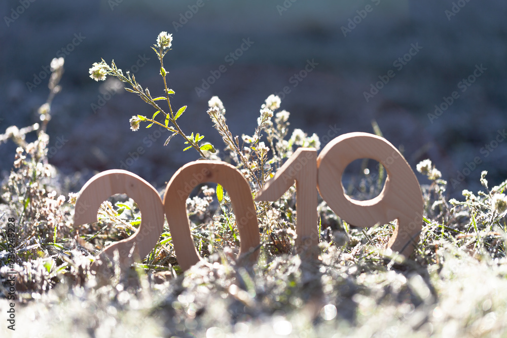 Fototapeta Wooden number 2019. Happy new Year 2019.