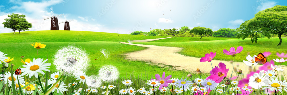 Fototapety, obrazy: Landscape background, road, grass, flowers, two mills