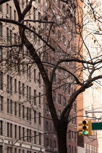 Tuinposter New York City Buildings in Manhattan