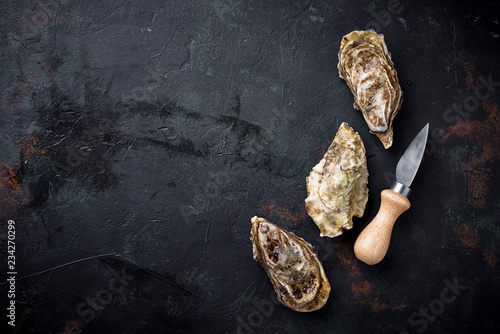 Fresh oysters on dark background Canvas Print