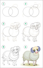 Page Shows How To Learn Step By Step To Draw A Cute Domestic Male Sheep. Developing Children Skills For Drawing And Coloring. Vector Image.