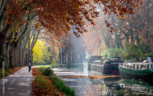 Fotografía The Canal du Midi near Toulouse in autumn