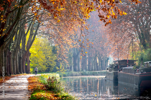 The Canal du Midi near Toulouse in autumn Fotobehang