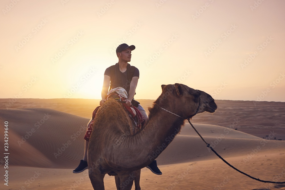 Fototapety, obrazy: Camel riding in desert