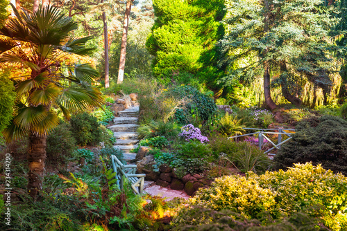 Park outdoor landscape with stairs for walking, tropical