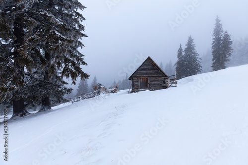Christmas and New Year background with winter trees and cottage covered with fresh snow in the mountains - Magic holiday background