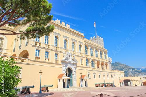 Obraz na plátně Palais du Prince de Monaco