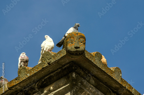 On a sunny autumn day on a stone ledge of the roof of a medieval building warms a group of wild pigeons
