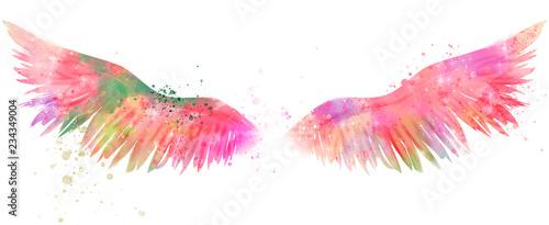 Fényképezés  magic watercolor wings