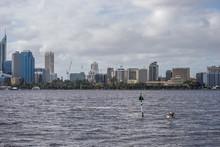 Landscape Of A Suburbian Area In Perth