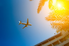 Plane Passing Palm Trees Tops And Hotel Building With Blue Sky On Background