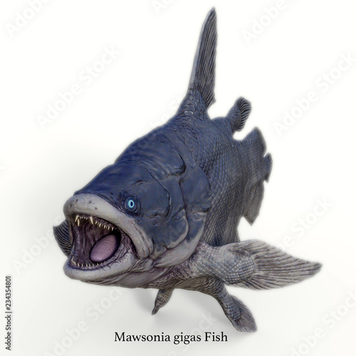 Mawsonia Fish on White with Font - Mawsonia was a extinct coelacanth lobe-finned fish that prowled the deep ocean during the Triassic and Cretaceous Periods of North Africa and Brazil, South America. Wall mural