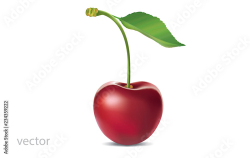 Fotografie, Obraz Realistic vector illustration of ripe cherry with green leaf