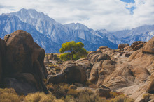 View Of Alabama Hills, Famous Filming Location Rock Formations Near The Eastern Slope Of Sierra Nevada, Owens Valley, West Of Lone Pine In Inyo County, Inyo National Forest, California, United States.