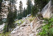 Rocky Hiking Trail In Yosemite National Park, Sierra Nevada Mountains, California
