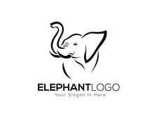 Drawing Elephant Logo Style Design Inspiration