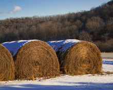 Hay Bales Covered With Snow