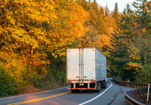 Big Rig Semi Truck Transporting Semi Trailer With Cargo On Winding Road With Yellow Autumn Trees In Forest