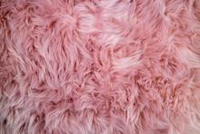Pink Sheepskin Background. Fur...
