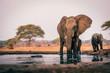 canvas print picture - Elefantenkuh mit Jungem am Wasserloch, Senyati Safari Camp, Botswana