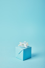 Gift Box With White Bow On Blu...
