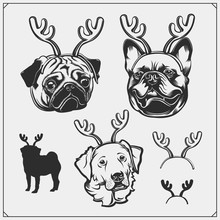 Cute Dogs Portrait With Christmas Antlers. French Bulldog, Pug And Golden Retriever With Reindeer Horns. Print Design For T-shirts.