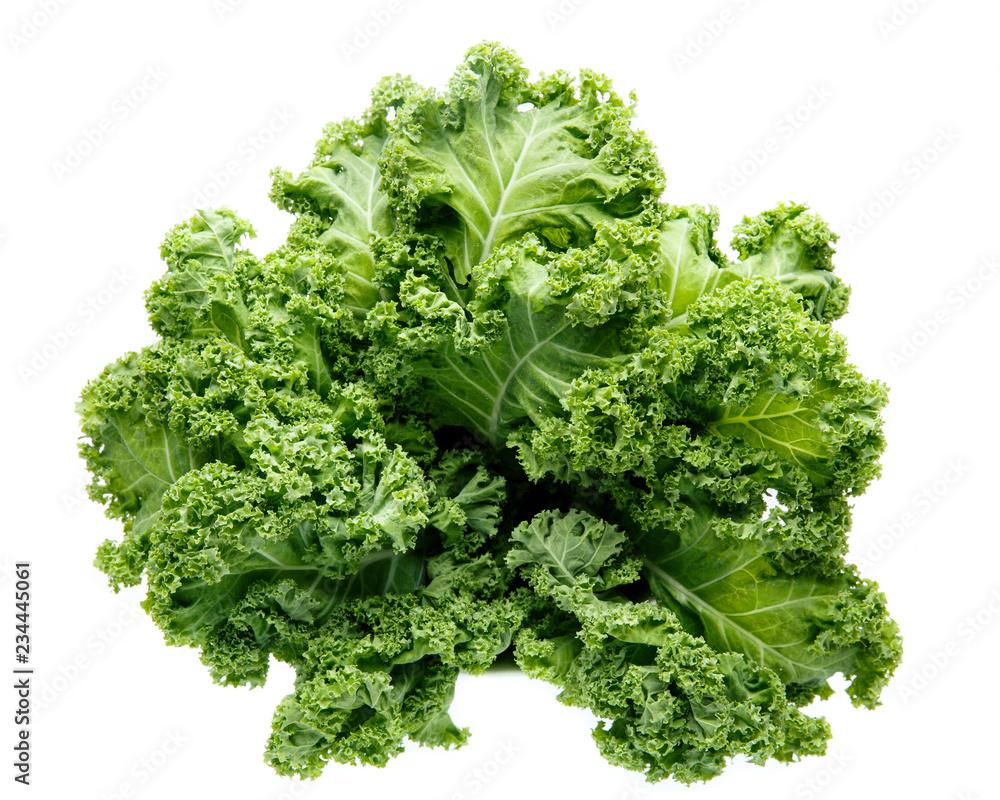 Fototapeta Fresh green organic kale leaves isolated on white.