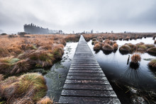 Naturschutzgebiet Bei Hält Und Nebel