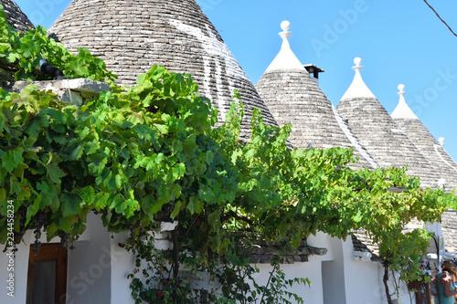 Fototapeta Domy w Alberobello  obraz