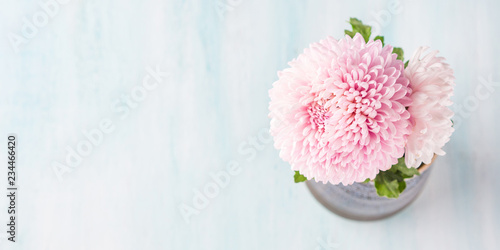 Leinwand Poster Pink chrysanthemum in a vase on pastel color background