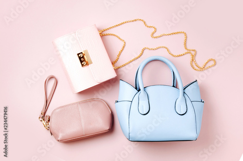 Fashion handbags on pale pink background Canvas Print